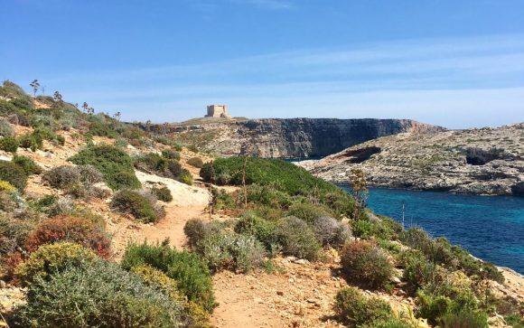 Angie auf Gozo